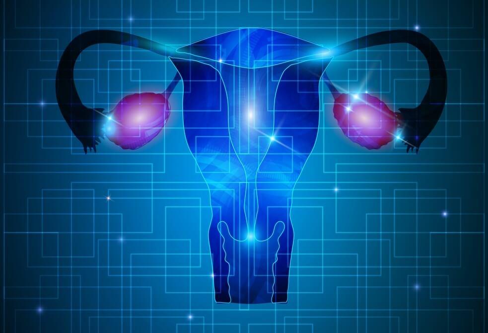 Ультразвуковая диагностика заболеваний шейки матки